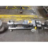 Low Shear Pump