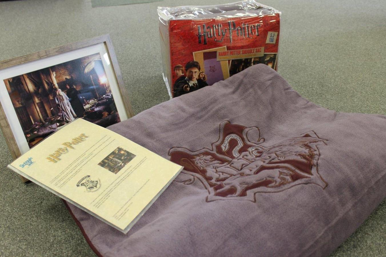 Original Snuggle Sac film prop from the Harry Potter film, The Prisoner of Azkaban, plus an extra