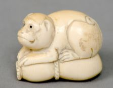 A late 19th/early 20th century Japanese carved ivory netsuke Formed as a monkey.  4 cms wide.