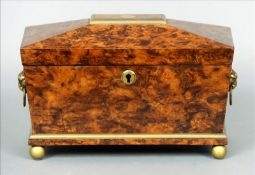 A 19th century tea caddy, possibly burr mulberry Of sarcophagus form, the brass mounted hinged lid