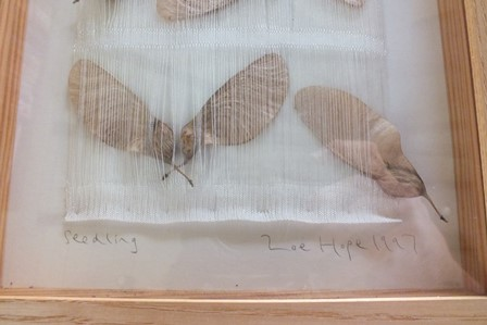 """A framed art work by Zoe Hope, """"Seedling"""", assembled from seeds, mounted in a mesh fabric, signed, - Image 2 of 3"""