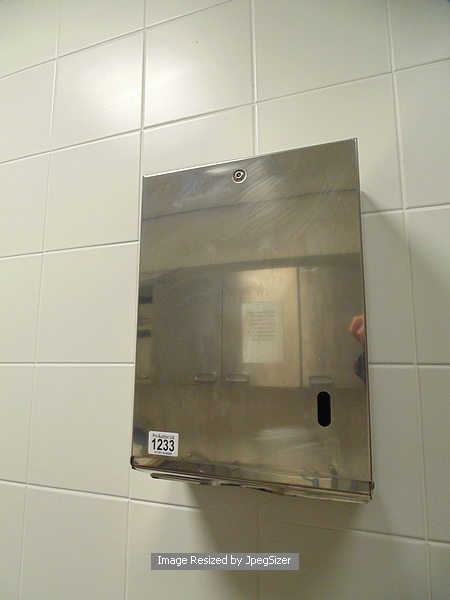 Lot 1233 - Stainless steel paper towel dispenser