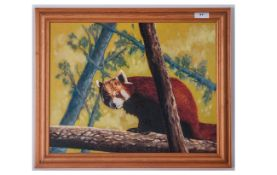 Oil on Board By Jimmy Tulloch, Titled ' Who Me ' Depicting a Raccoon In a Tree, Gallery Labels to