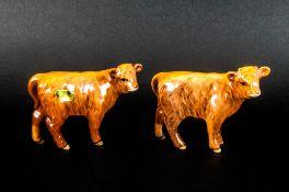 Beswick Animal Figures ( 2 ) In Total. Highland Calf, Model Num.1827D. Designer A. Gredington.