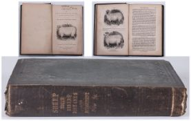 Sheep Breeds Management By William Youatt P.R.V.C 'The Mountain Shepherds Manual' New Edition 1856