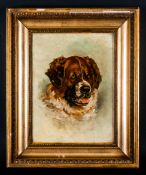 Florence Robinson 1874-1937 American Artist 'Saint Bernard' oil on canvas, signed & dated 1897. 13.
