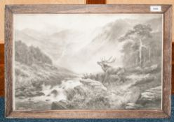 19thC Photogravure Of A Stag In The Scottish Highlands, 15 x 22 Inches