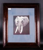 R.D Gallion Print Of Elephant in dark wooden antique frame,