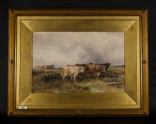 W.H Pigott 1810-1901 Titled 'Highland Cattle' watercolour, signed & dated 1895 lower right. Frames