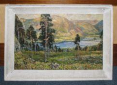 Early 20thC Large Oil On Board Depicting A Mountainous Landscape With Lake, Signed Albert Woods,