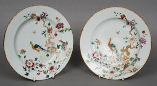 A pair of 18th century Chinese polychrome decorated plates Each decorated with pheasants and insects
