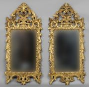 A pair of 19th century giltwood wall mirrors Each plate framed by ornately pierced floral scroll
