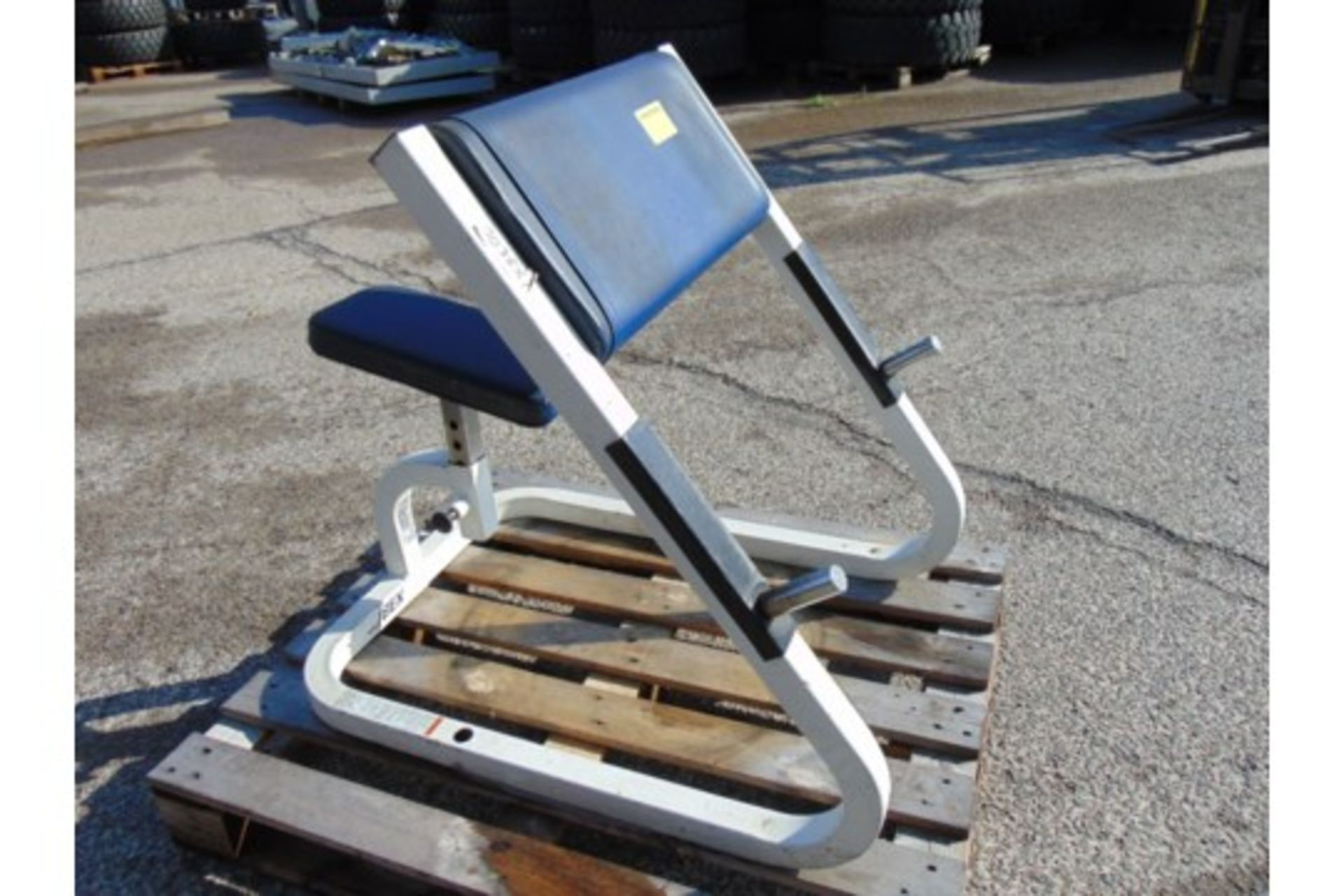 Lot 25841 - Cybex Scott Curl Bench