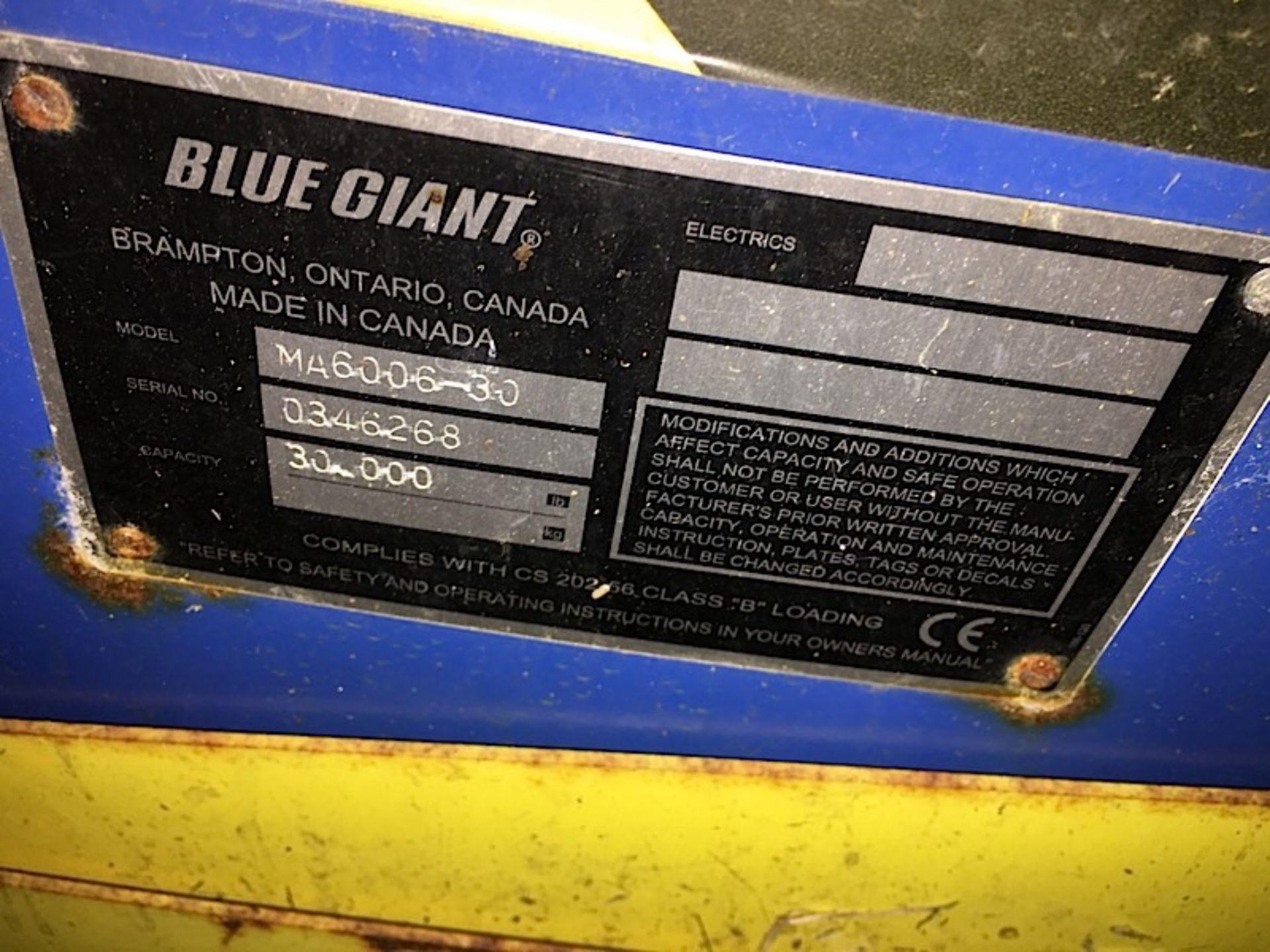BLUE GIANT DOCK LEVELER - Image 3 of 3