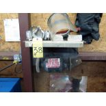 WALL MOUNTED BENCH GRINDER, PANTHER KING MDL. LF-137