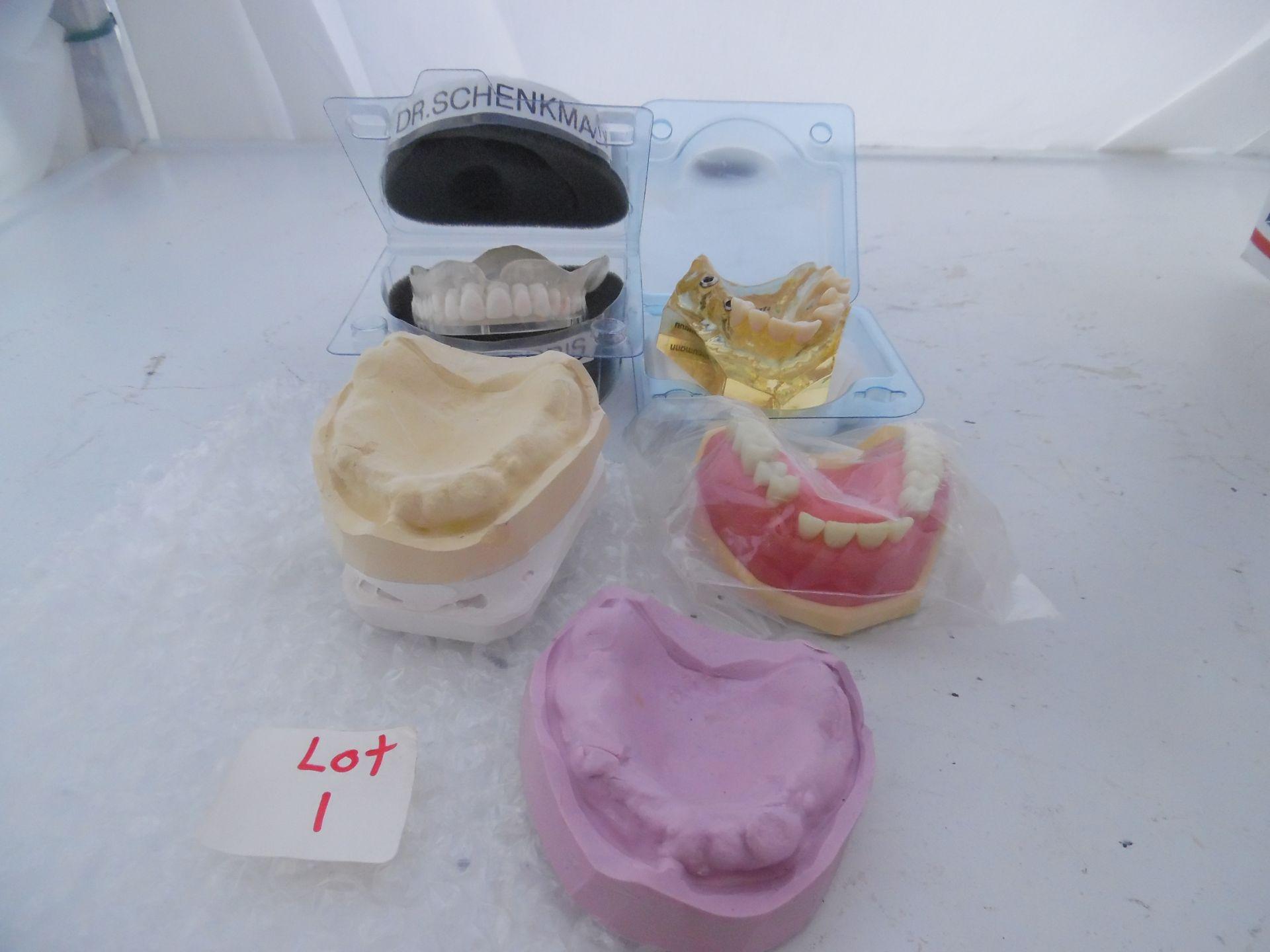 Dental Models/Molds