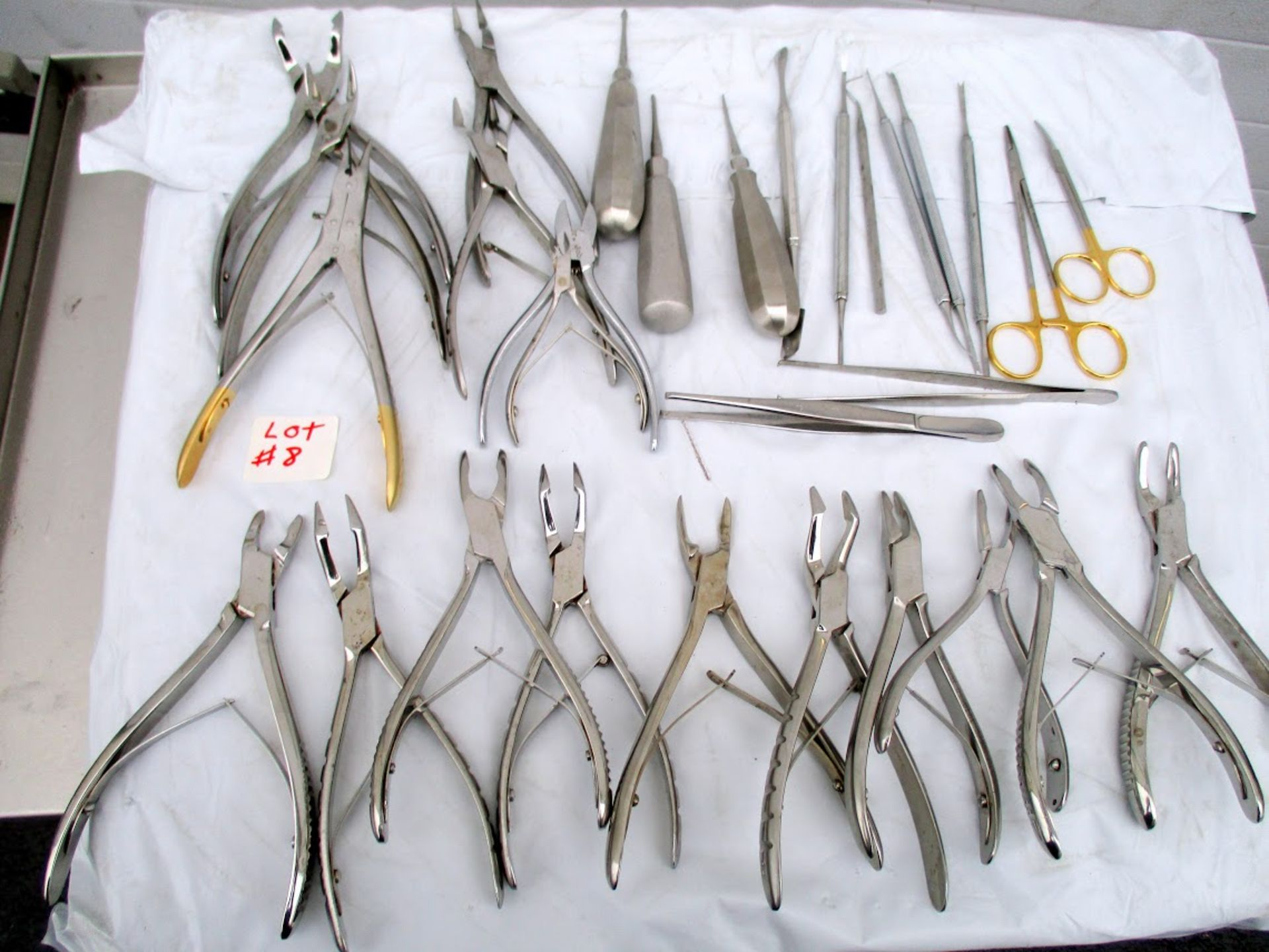 Lot containing 28 Dental Tools. Manufacturers include Ronguers and W. Lorenz