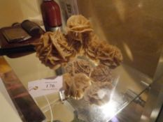 A group of desert rose gypsum fossil specimens
