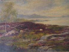 Scottish School 19th Century, Sheep in a Highland Landscape, oil on canvas, not mounted, unframed