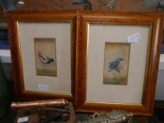 Indian Company School, Kingfisher and Duck, a pair of watercolour studies, probably 19th century,