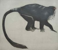 H Fry (20th century) British, De Brazza, a Capuchin monkey, engraving, artists proof, signed and