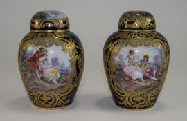 Sevres - Hand Painted and Decorated Pair
