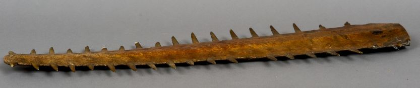 A 19th century saw fish rostrum (Pristis pristis) - WITHDRAWN  CONDITION REPORTS: