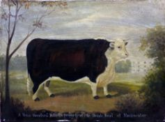 ENGLISH NAIVE SCHOOL  A Prize Hereford Bull, The Property of Mr.