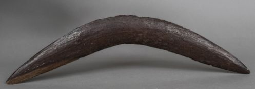 An early 20th century Australasian carved wood boomerang 54 cm wide.