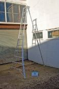 A WORKWEAR HPM360 12-Tread 3.98M Light Alloy Tripod Hedge Ladder with Adjustable Rear Leg & Claw