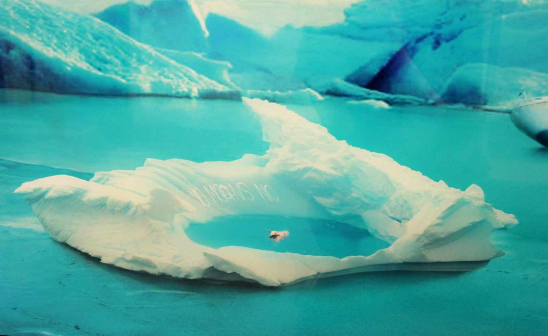 Helmut Grill geb. 1965 The Frozen Discoverer 2011 Fotografie hinter Acrylglas signiert, betitelt, - Bild 4 aus 4