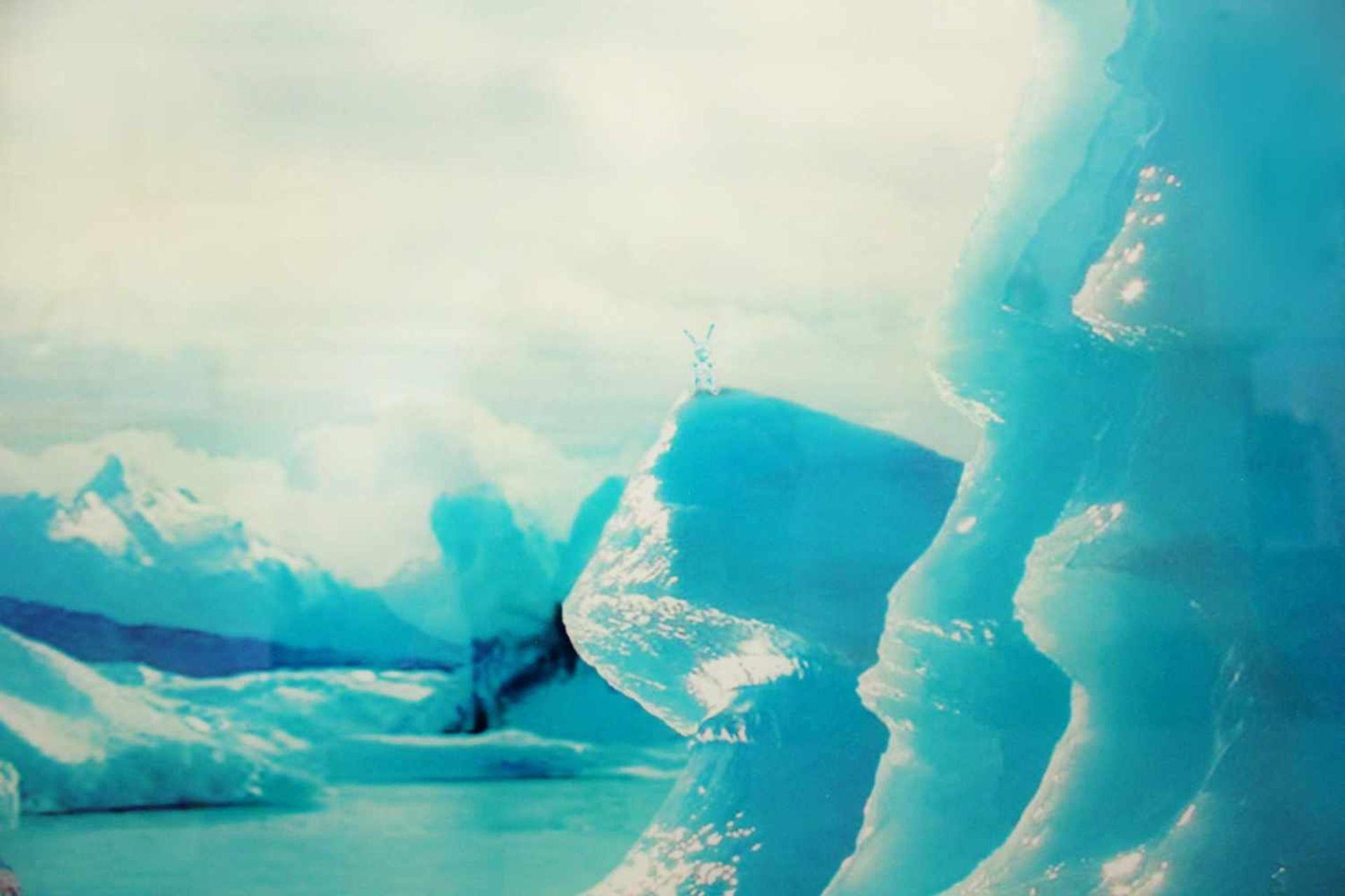 Helmut Grill geb. 1965 The Frozen Discoverer 2011 Fotografie hinter Acrylglas signiert, betitelt, - Bild 3 aus 4