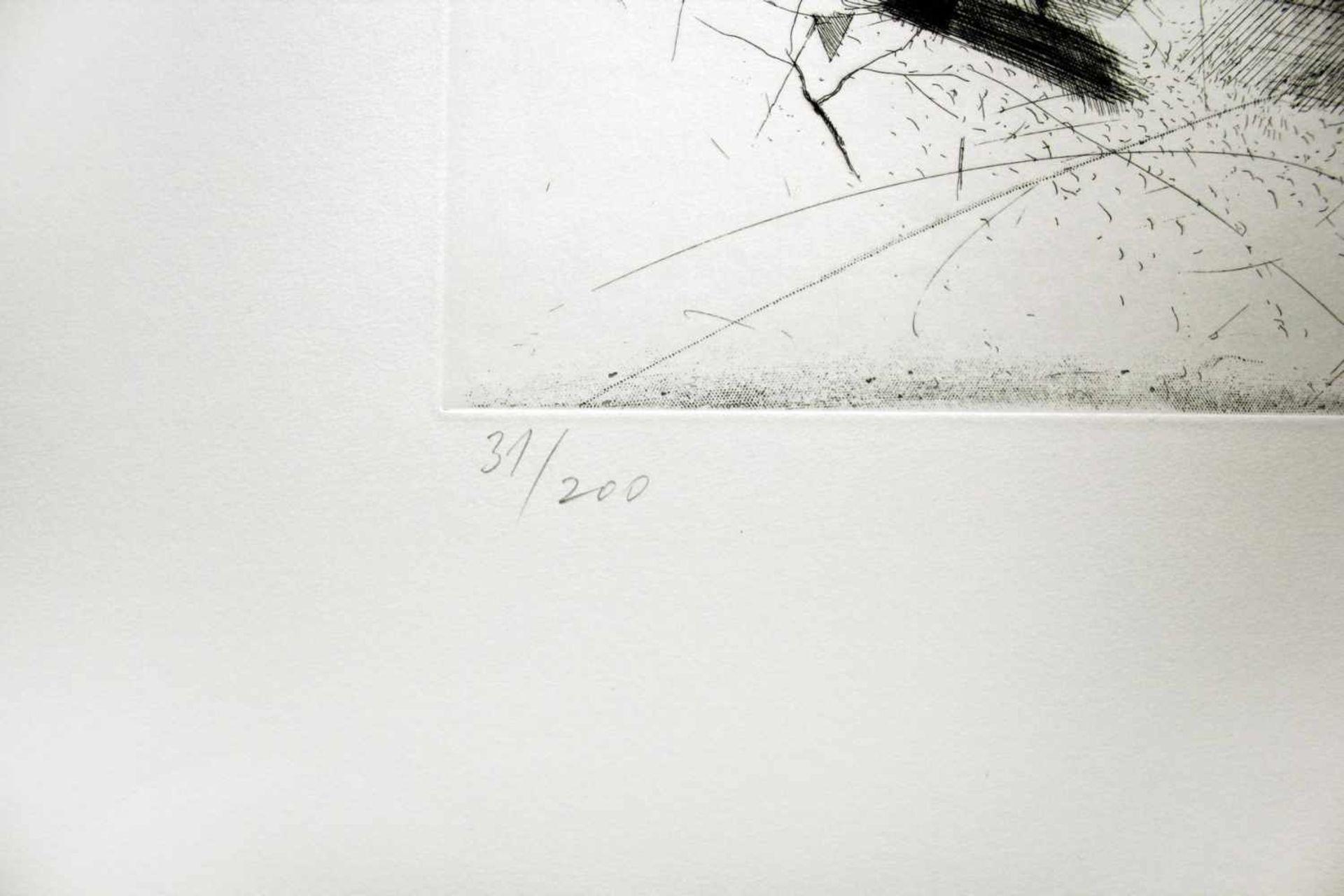 Karl Korab geb. 1937 o.T. 1993 Radierung handsigniert, datiert und nummeriert 31/200 51 x 65 cm - Bild 3 aus 4