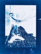 BIRGIT GRASCHOPF (1978 WIEN) GENOVAGEWITTER, 2015 Cyanotypie, 52 x 39 cm gerahmt, Maß mit Rahmen: 65