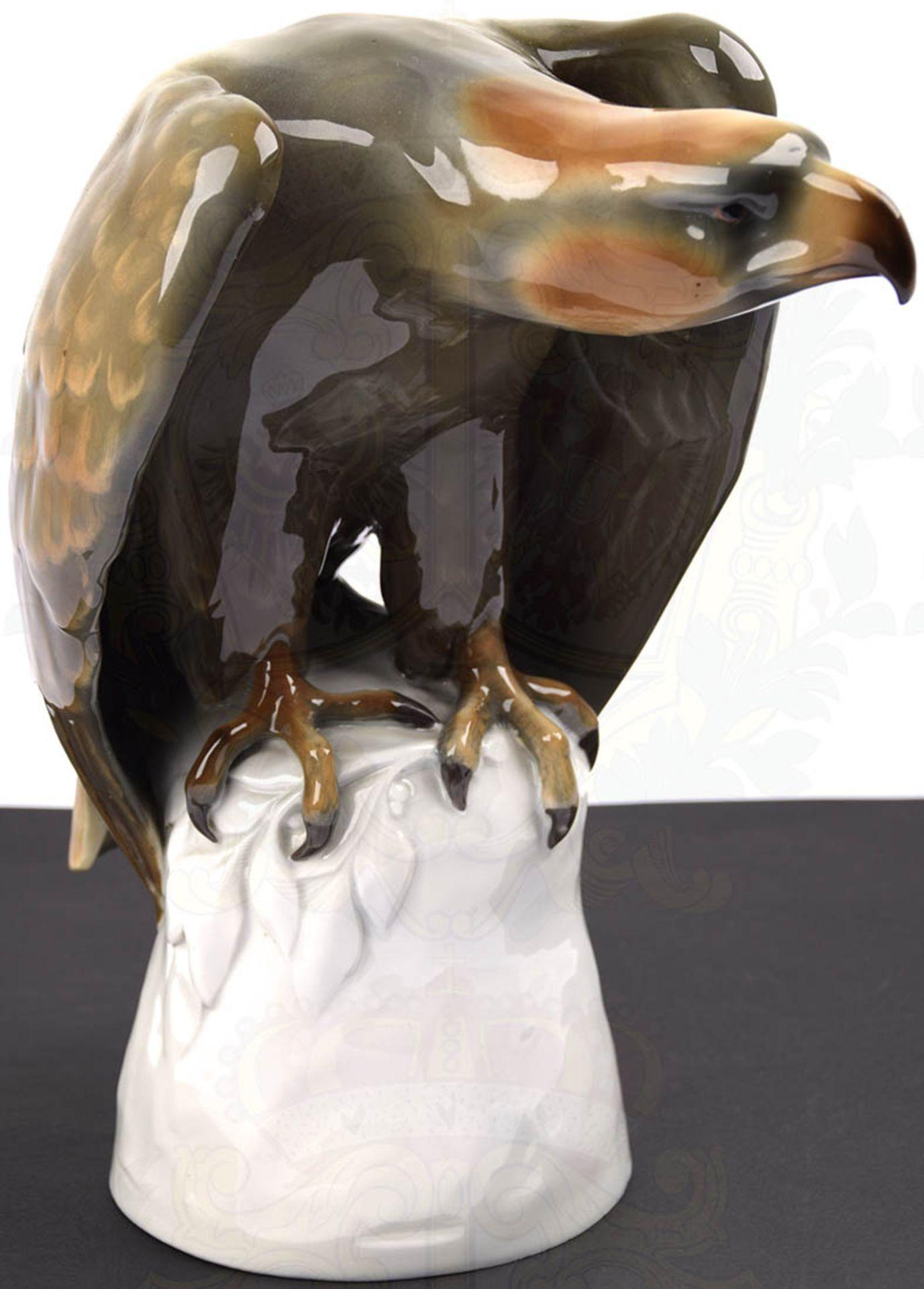 """PLASTIK """"SPÄHENDER ADLER"""", weißes Porzellan, glasiert, Adler farbig gefaßt, Hals und Kopf - Bild 4 aus 6"""