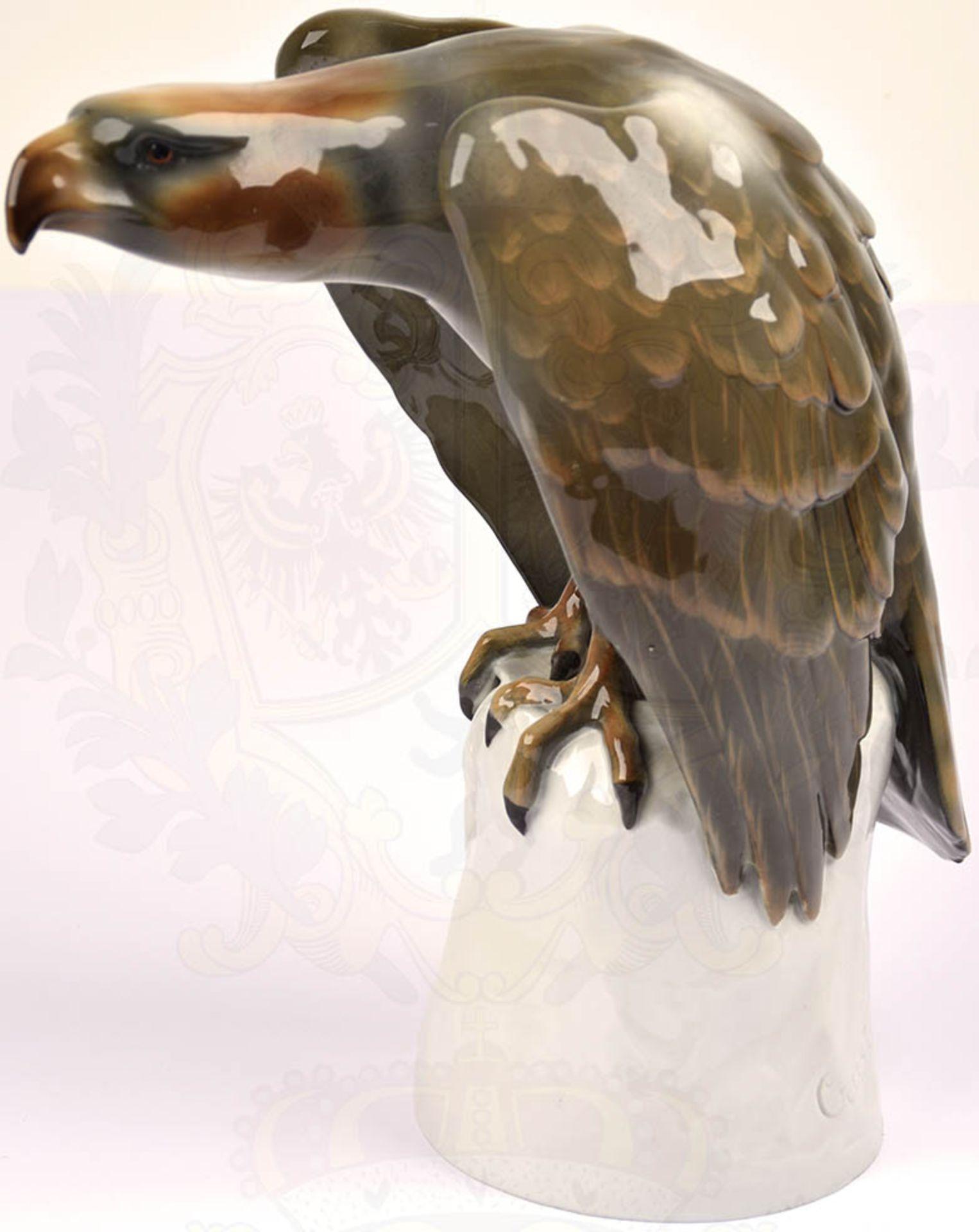 """PLASTIK """"SPÄHENDER ADLER"""", weißes Porzellan, glasiert, Adler farbig gefaßt, Hals und Kopf"""