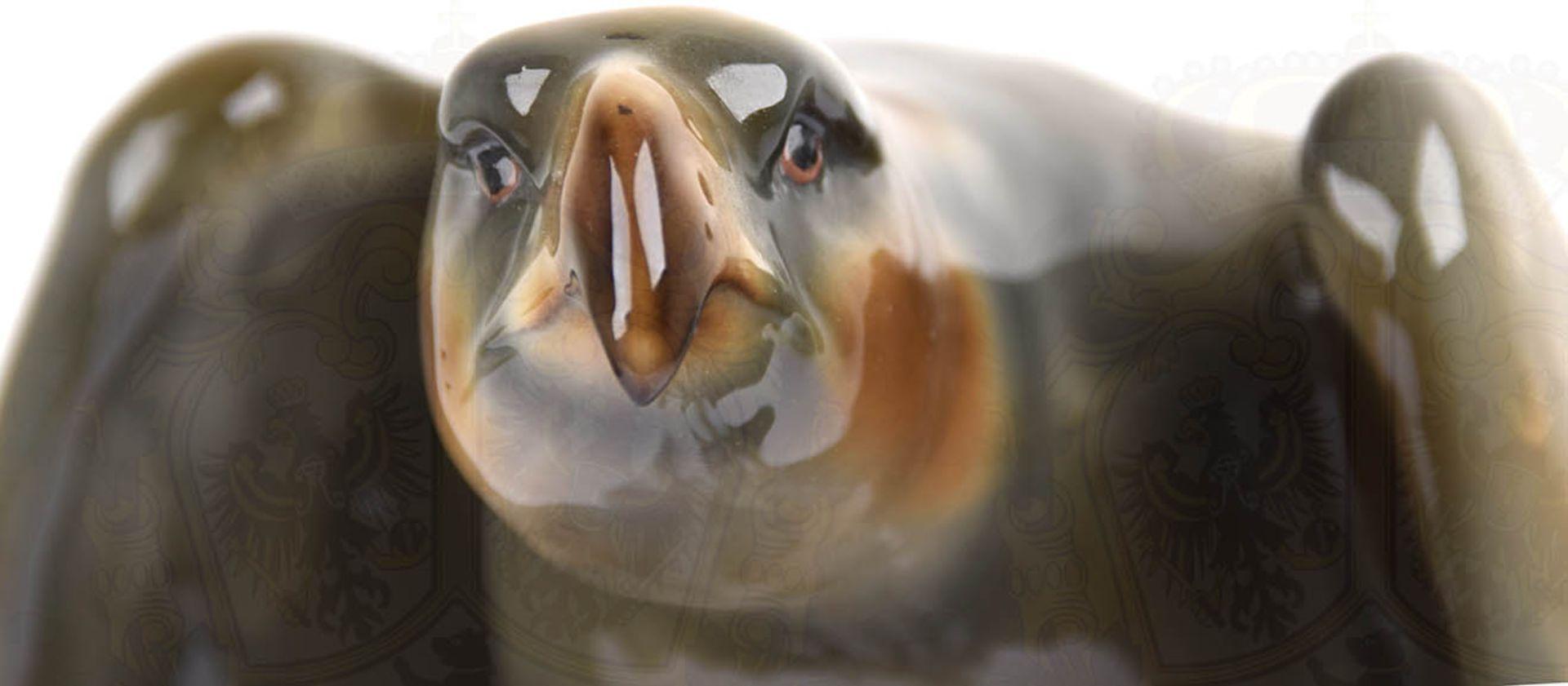 """PLASTIK """"SPÄHENDER ADLER"""", weißes Porzellan, glasiert, Adler farbig gefaßt, Hals und Kopf - Bild 5 aus 6"""