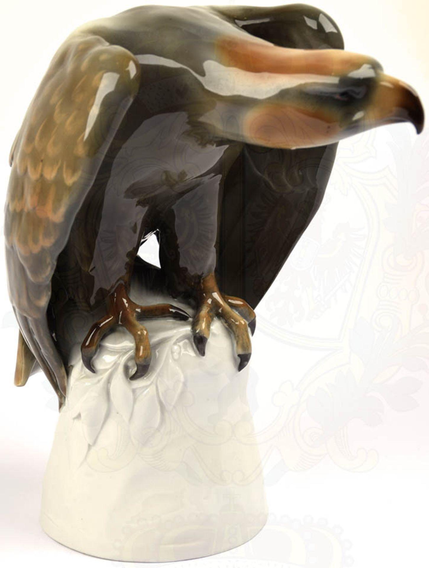 """PLASTIK """"SPÄHENDER ADLER"""", weißes Porzellan, glasiert, Adler farbig gefaßt, Hals und Kopf - Bild 2 aus 6"""