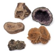 Konvolut Mineralien Amethystdruse, Sandrose, Bleiglanz, versteinertes Holz und Quarzit.