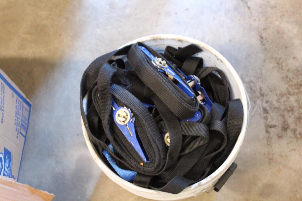 Lot 1 - Light duty ratchet straps