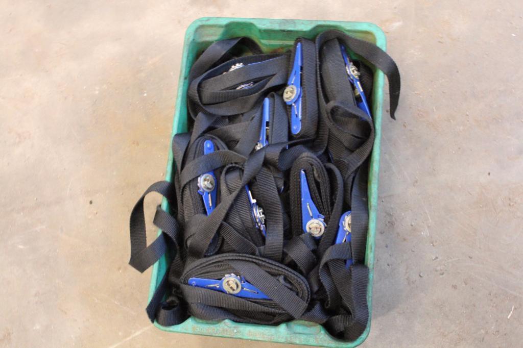 Lot 3 - Light duty ratchet straps