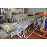 """S/S Frame Product Conveyor, Dimensions = 22"""" X 155"""", with S/S Mounted Belt Drive and Heated Side"""
