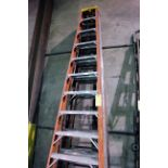 LOT OF A-FRAME LADDERS, 12'