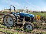 Lot 105 - (2009) New Holland mod. TT60A, 2WD Farm Tractor, 3-Spd Low & High, 3pt. Hitch, Hrs: 5304;