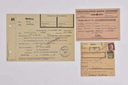 Le NSDAP en Alsace Rare carte d'adhérent du NSDAP pour un habitant de Haguenau délivré le 20 janvier