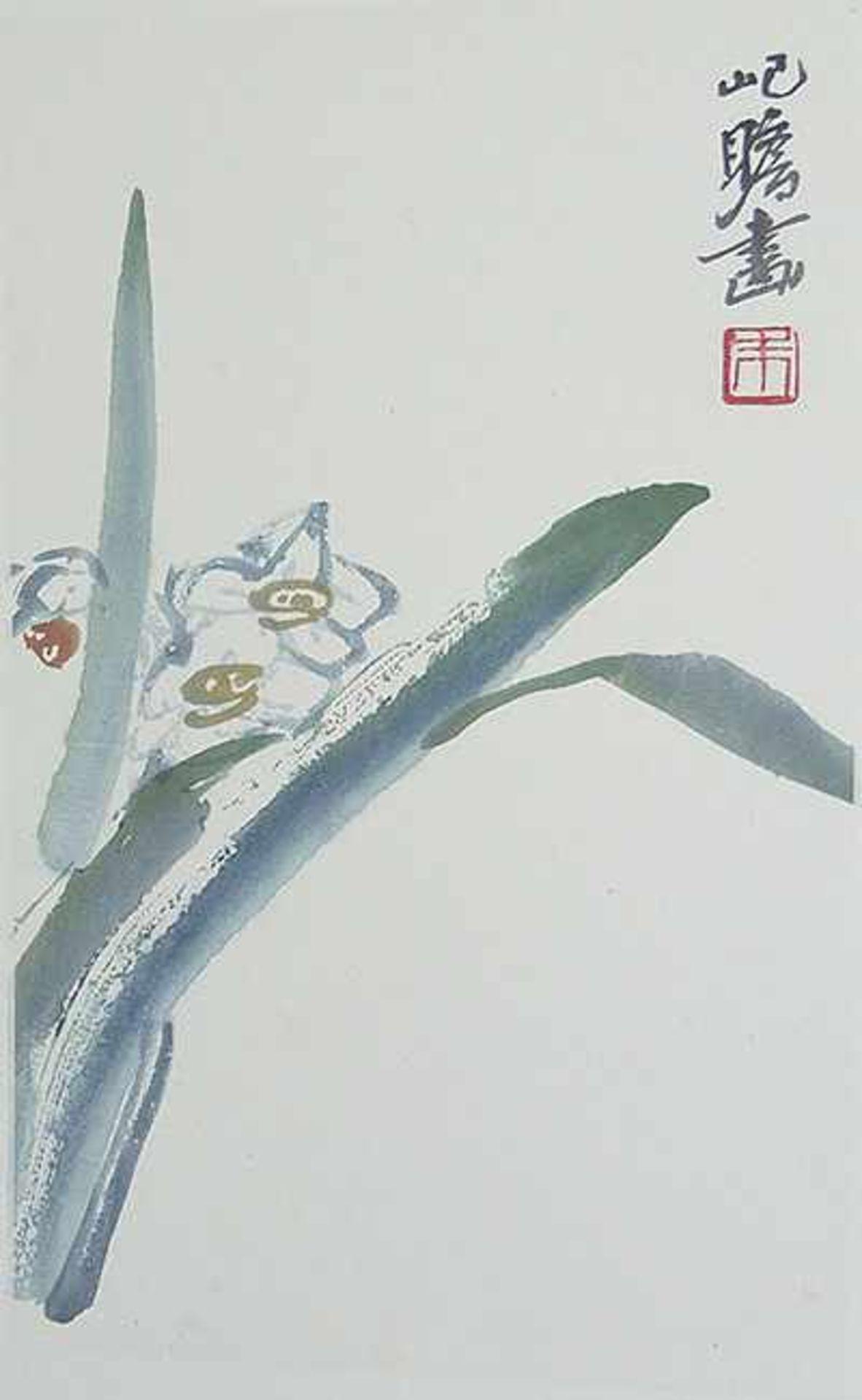 Zhu Jizhang (20. Jh.) Aquarellfarben-Holzschnitt. China, 20th cent. Darstellung einer Narzisse mit - Image 2 of 2