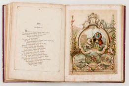 Neue Sammlung von den besten Fabeln Russisches Lehrbuch mit 8 Lithographien, 1874 29,3 x 23 x1,3