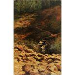 Scorcio di bosco, Vincenzo Massa (Modena 12/9/1861 Budrio 29/4/1944) olio su tela firmato in basso a
