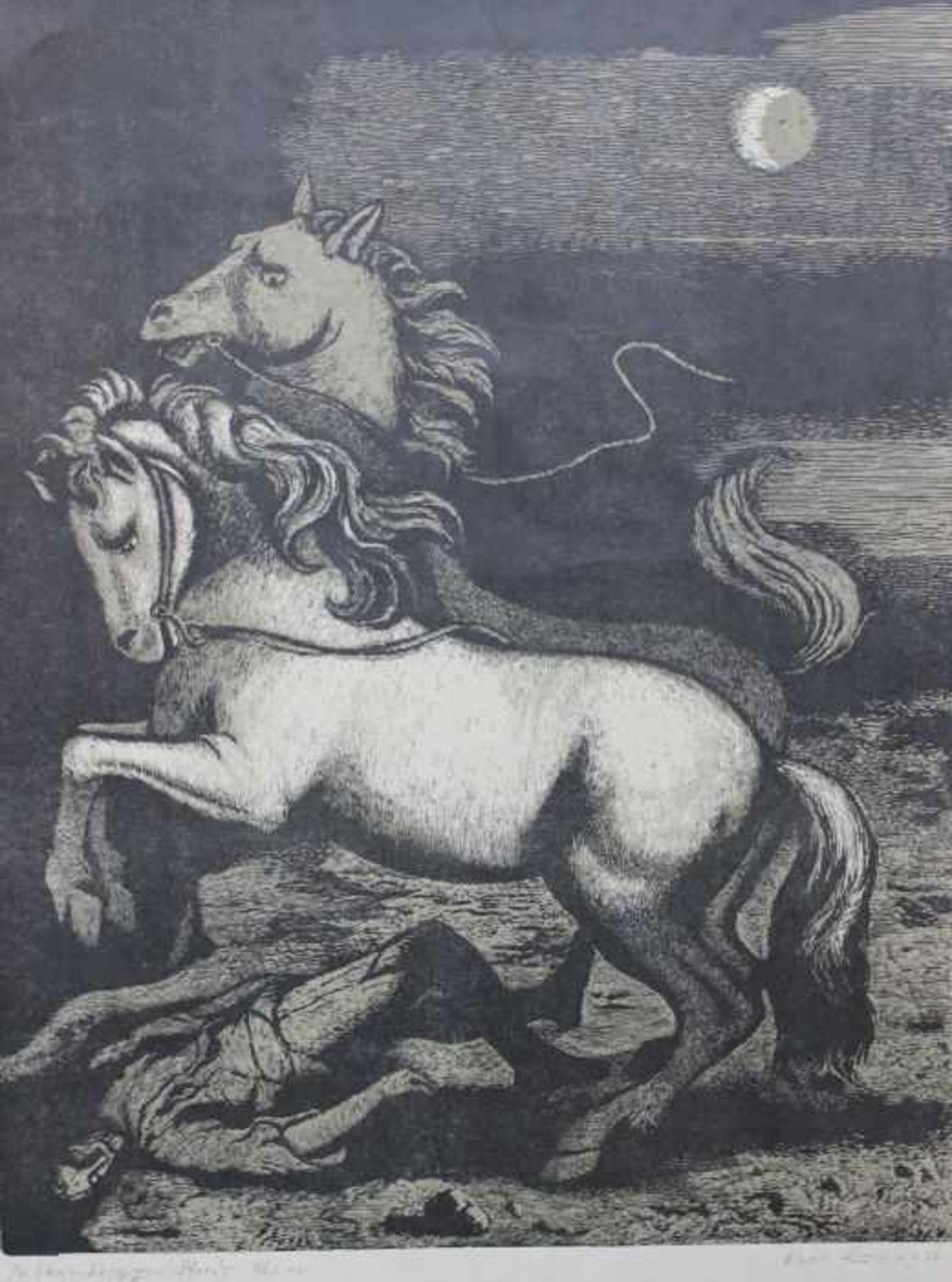 """Los 44 - Linolschnitt - Karl Rössing (Gmunden - 1987 Wels) """"Die barmherzigen Pferde"""", r.u. Bleistiftsignatur,"""