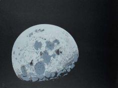 Lowell Nesbitt Moonshot Farblithografie auf Papier, 1969; H 550 mm, B 750 mm; signiert und